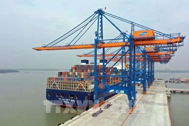 Volume of containers through Ba Ria-Vung Tau seaports up 21 percent hinh anh 1