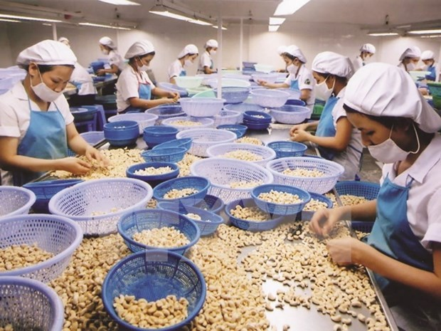 US - largest agro-forestry-fishery importer of Vietnam in Jan-Feb hinh anh 1