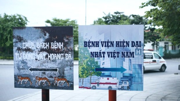 Video encourages people to avoid using products from wild animals hinh anh 1