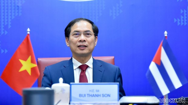 Vietnamese, Cuban deputy foreign ministers hold political consultation hinh anh 1