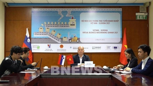 Vietnam, Slovenia eye cooperation potential in mechanical engineering hinh anh 1