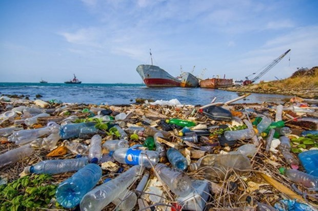 Webinar discusses dealing with microplastic pollution hinh anh 1