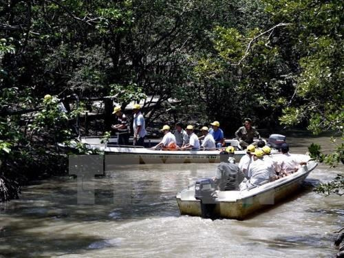 Ecotourism a boon for southeastern region post-pandemic hinh anh 1