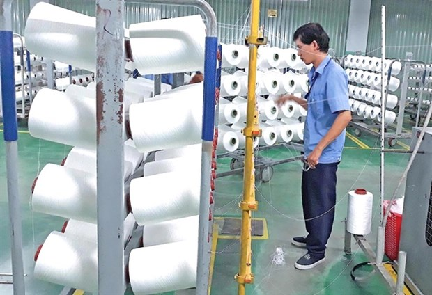 Vietnamese textile industry sees huge export opportunities hinh anh 1