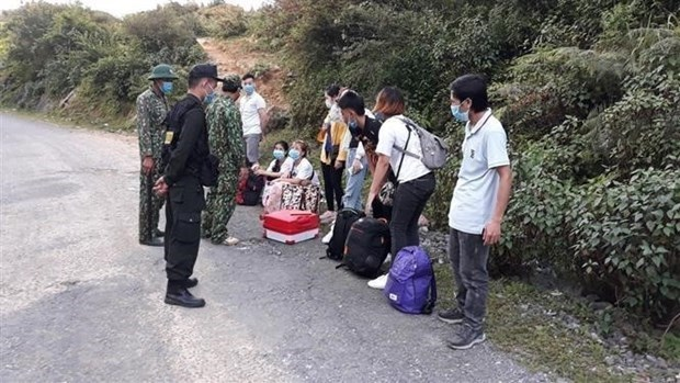 Dozens of illegal immigrants found in border provinces hinh anh 1