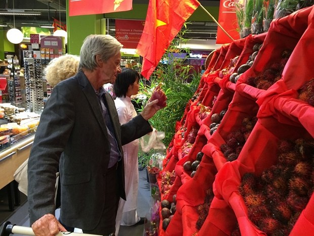 Ample room for growth in Vietnamese exports to France hinh anh 1