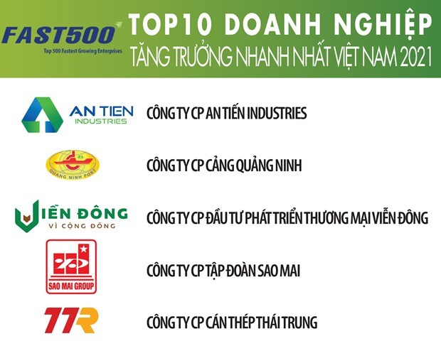 List of Vietnam's 500 fastest-growing firms unveiled hinh anh 1