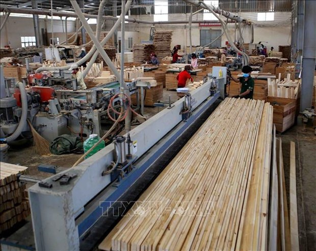 Bright outlook for domestic timber industry hinh anh 1
