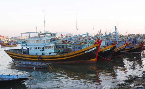 Binh Thuan working to tackle IUU fishing hinh anh 1