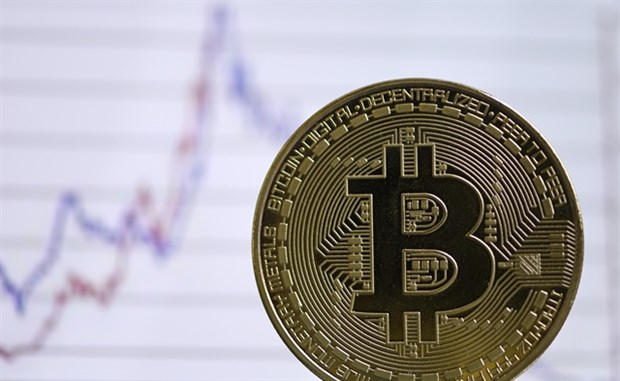 Experts, government agencies warn of risks with trading cryptocurrency hinh anh 1