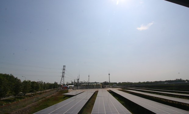 Mekong Delta's first solar power plant underway in Hau Giang hinh anh 1