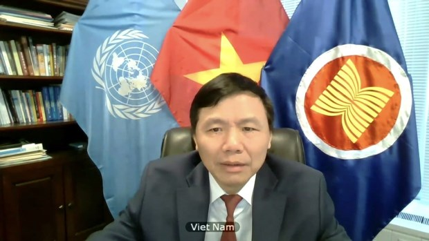 Int'l efforts needed to end Syria crisis: Vietnamese ambassador hinh anh 2