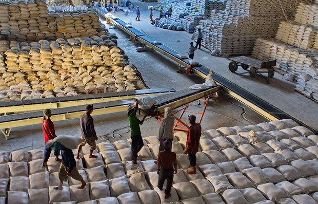 Vietnam ships 638,000 tonnes of rice abroad in Jan-Feb hinh anh 1