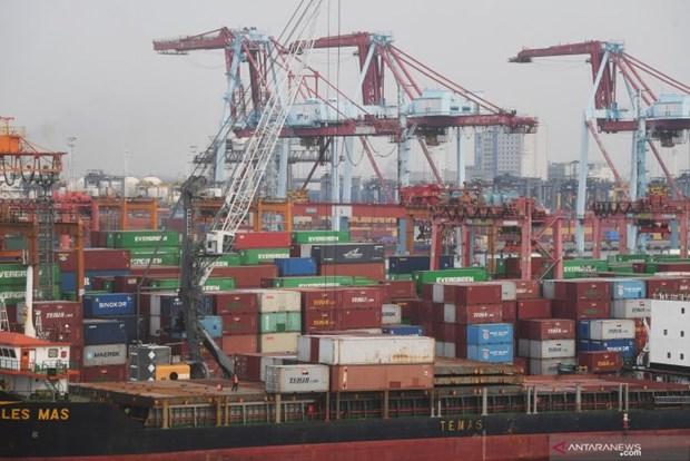 Ekonomi Indonesia harus tumbuh 6-7%.  Untuk keluar dari perangkap pendapatan menengah hinh anh 1