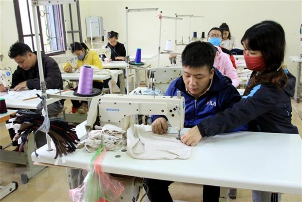 Some 20,000 disabled people receive vocational training each year hinh anh 1