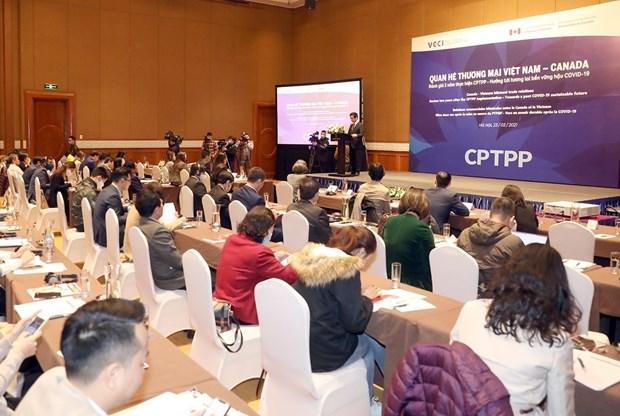 CPTPP benefits Vietnam-Canada trade ties: experts hinh anh 1