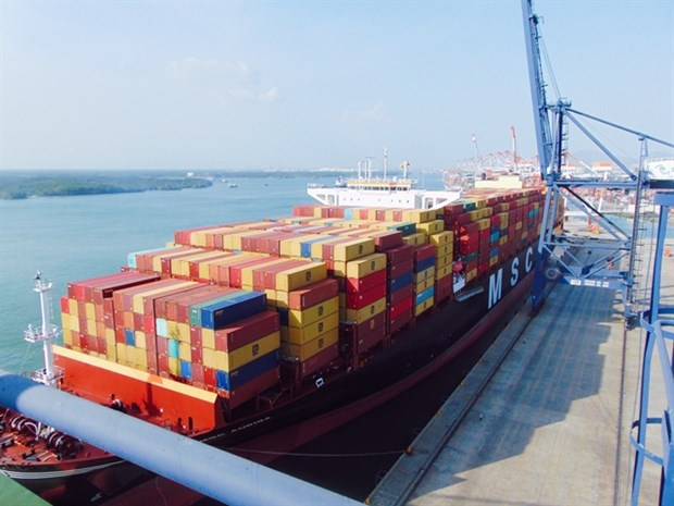 Cai Mep-Thi Vai port receives giant container vessel hinh anh 1
