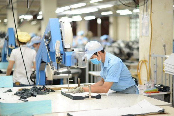 Vietnam textile industry combats pandemic with PPE switch: Forbes hinh anh 1