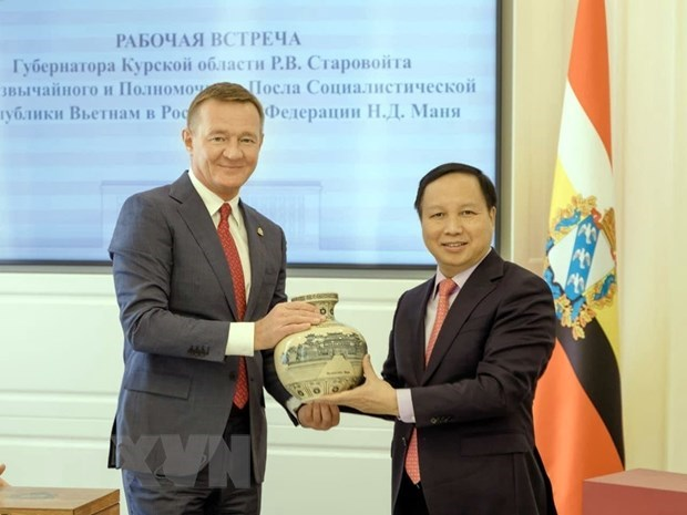 Vietnam looks to boost economic, trade ties with Russian localities hinh anh 1