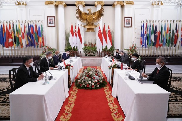 Indonesian, Singaporean FMs discuss bilateral cooperation hinh anh 1