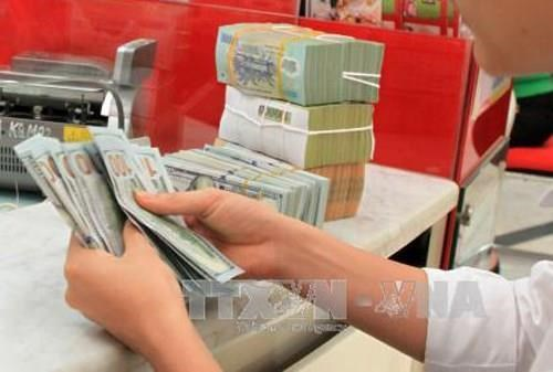 Reference exchange rate up 12 VND hinh anh 1