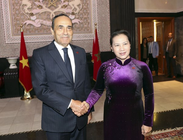 Morocco, Vietnam enjoy sound friendship, cooperation: diplomat hinh anh 2
