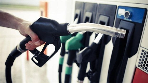 Petrol prices rise slightly in latest adjustment hinh anh 1