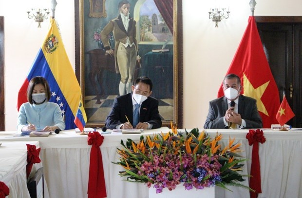 Ambassador promotes business cooperation with Venezuelan state hinh anh 1