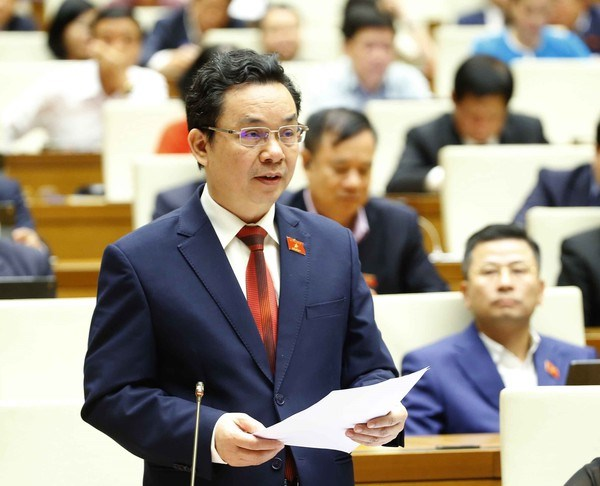 Legislators comment on Gov't performance over last five years hinh anh 2