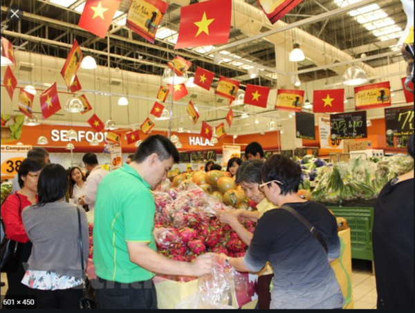 Vietnamese firms advised to promote online sale in Singapore hinh anh 1
