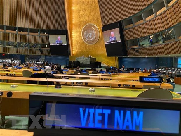 Vietnam to promote regional organisations' role in settling disputes hinh anh 2