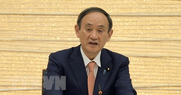 Japan, Indonesia bolster cooperation under Indo-Pacific Strategy hinh anh 1
