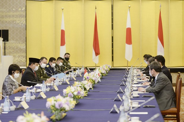 Indonesia, Japan foster cooperative ties in multiple spheres hinh anh 1