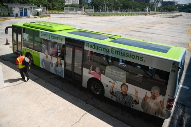 Singapore conducts six-month trial for public buses with solar panels hinh anh 1