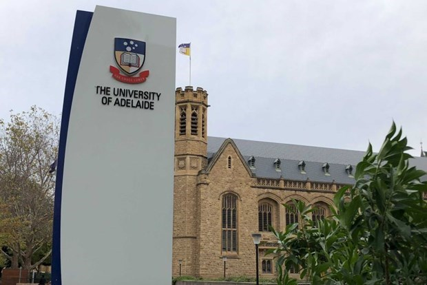 Universities from Vietnam, Australia step up joint training programmes, research hinh anh 1