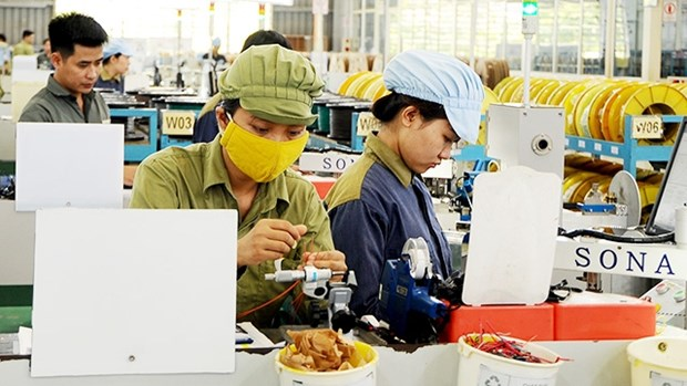HCM City seeks to meet 65 percent of supporting industry products demand hinh anh 1