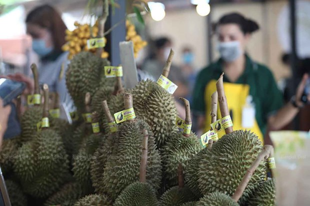 Thailand to become world's top durian producer in five years hinh anh 1