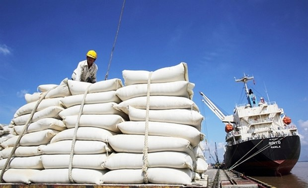 Lower prices will make it easier to sell rice: exporters hinh anh 1