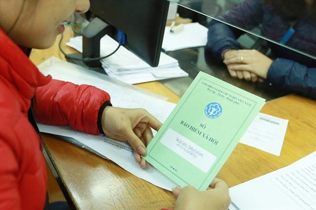 National insurance database to be launched on June 1 hinh anh 1