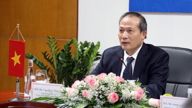 Vietnam, Saudi Arabia work to boost bilateral cooperation hinh anh 2