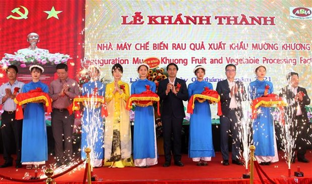 Large farm produce processing factory inaugurated in Lao Cai hinh anh 1