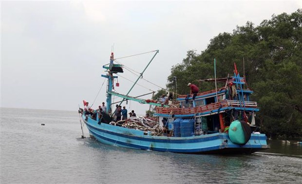 Kien Giang making every effort to fight IUU fishing hinh anh 2
