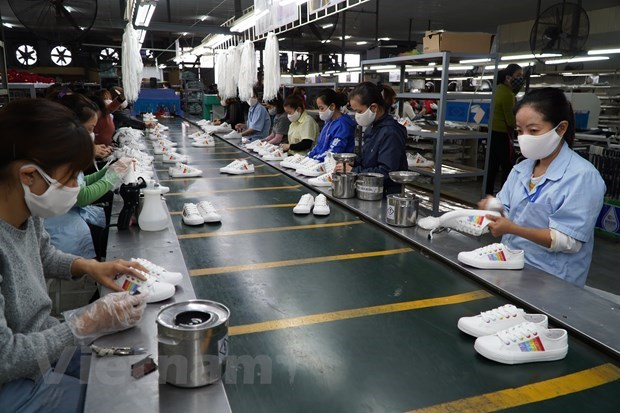 FDI firms hold lion's share of footwear exports hinh anh 1