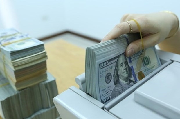 Reference exchange rate up 4 VND at week's beginning hinh anh 1