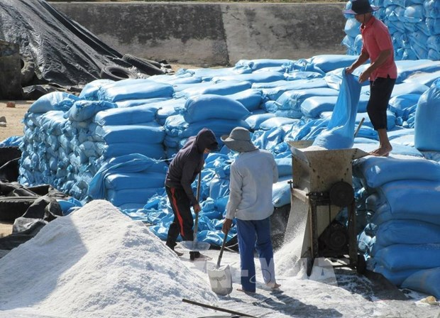 Vietnam salt company's IPO surpasses plan hinh anh 1