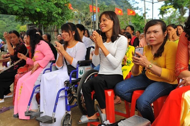 Workshop talks ways to promote participation of disabled persons in political life hinh anh 1