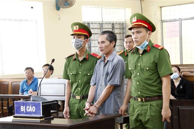 Ca Mau man jailed for brokering illegal entry to Vietnam hinh anh 1
