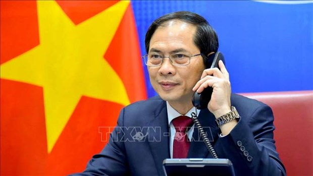 FM Bui Thanh Son holds phone talk with Chinese counterpart hinh anh 1