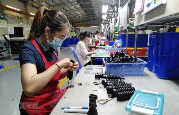 Global apparel makers band together to demand better terms hinh anh 1