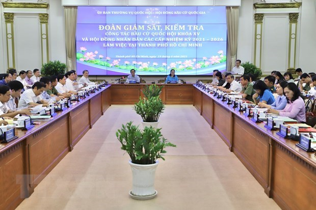Ho Chi Minh City's preparations for elections examined hinh anh 1